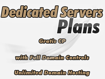 Economical dedicated servers hosting account
